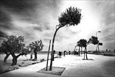 Free Promenade Stock Image - 6118151