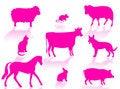 Free Farm Animals Royalty Free Stock Image - 6121436