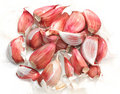 Free Garlic Cloves Stock Images - 6129574