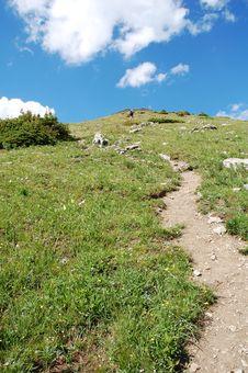 Free Steep Hiking Trail Stock Photos - 6121013