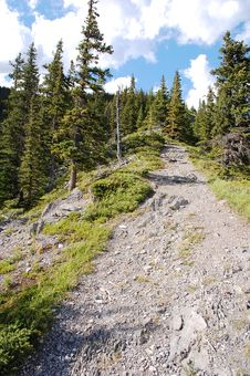Free Steep Hiking Trail Royalty Free Stock Photo - 6121075
