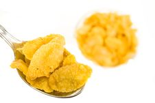 Free Corn Flakes Stock Images - 6124444