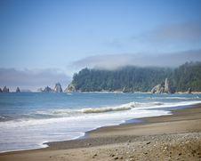Free Beach Royalty Free Stock Photography - 6125137