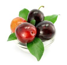 Free Plum Fruits With Green Leafs Isolated Stock Photography - 6127932