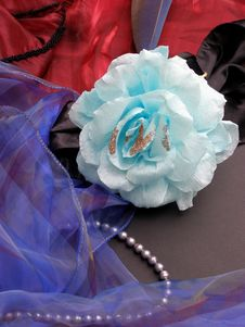 Free Blue Rose Royalty Free Stock Images - 6128959