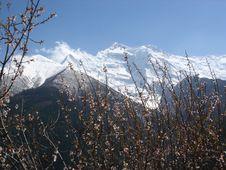 Free Spring Annapurna Stock Images - 6129184