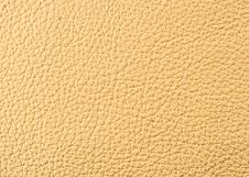 Free Natural Leather Texture Royalty Free Stock Photo - 6129705