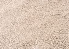 Free Natural Leather Texture Royalty Free Stock Images - 6129719