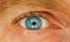 Free Blue Eye Royalty Free Stock Photography - 6129737