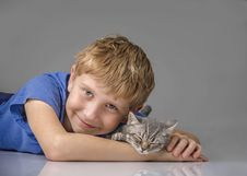 Free Kitten, Joy In The House Stock Photo - 61258280