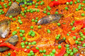 Free Colorful Seafood Royalty Free Stock Photo - 6130465