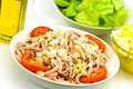 Free Gourmet Meat Salad With Tomato,onion,lettuce Stock Photos - 6134593