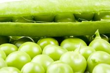 Free Fresh Pea Pods Royalty Free Stock Image - 6130066