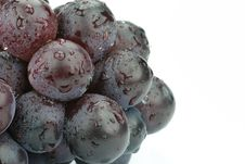 Free Grapes Stock Photos - 6131193