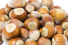 Free Hazel Nuts Background Stock Photos - 6131703