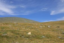 Free Altai Mountain In Summer Stock Photography - 6131892