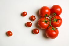 Free Tomatoes Stock Image - 6133011