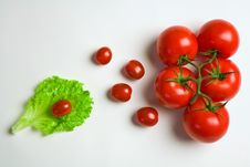 Free Tomatoes Stock Photos - 6133053