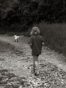 Boy Walking Dog Stock Images