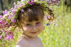 Free Wildflower Diadem 4 Royalty Free Stock Image - 6134706