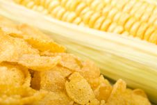 Free Corn And Cornflakes Stock Photo - 6134830