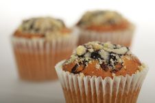 Free Muffins Royalty Free Stock Image - 6135436