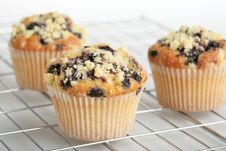 Free Muffins Royalty Free Stock Photo - 6135865
