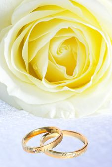 Free Rings And Rose Royalty Free Stock Photos - 6141698