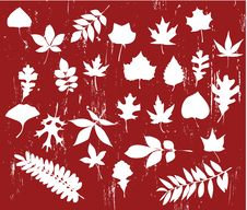 Free Vector Leaves Silhouette Set Stock Images - 6143024