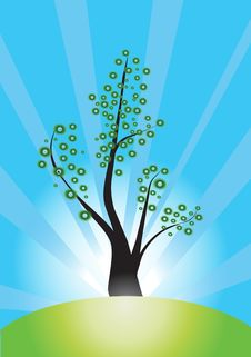 Tree Vector Royalty Free Stock Image