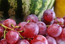 Free Fruits Stock Images - 6143814