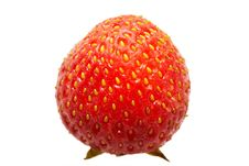 Free Red Strawberry Stock Photography - 6143952