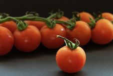Free Vegetable - Cherry Tomato Royalty Free Stock Photography - 6144677