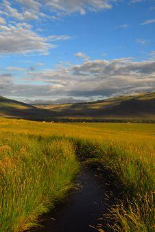 Free Colorado Creek Stock Photography - 6145472