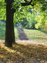Free Autumn In The City Royalty Free Stock Photo - 6153575