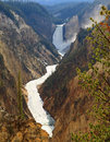 Free The Grand Canyon Of The Yellowstone Stock Photo - 6158070