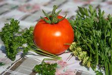 Free Gardener Vegetables Stock Photography - 6152702