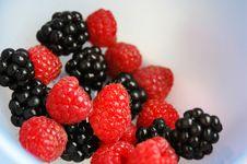 Free Berries Royalty Free Stock Photos - 6152718