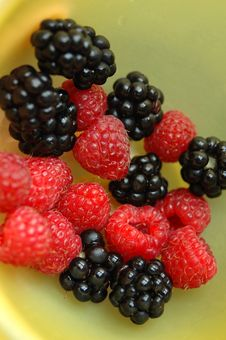 Free Berries Stock Images - 6152734