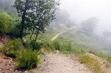 Free Foggy Mountains Royalty Free Stock Image - 6153256