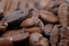 Free Coffee Beans Royalty Free Stock Images - 6155429