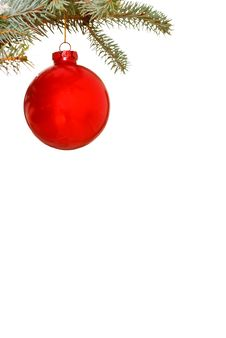 Free Bright Red Christmas Bauble Royalty Free Stock Photography - 6155987