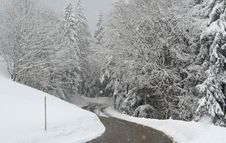 Free Road In The Snowfall Royalty Free Stock Image - 6156806