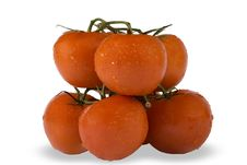 Free Healthy Red Tomatoes Stock Images - 6157464