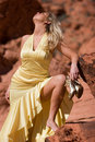Free Sexy Blonde Girl In Fashionable Dress Stock Photography - 6164902