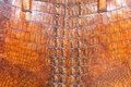 Free Crocodile Leather Stock Photography - 6168262