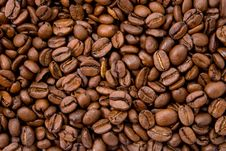 Free Coffee Beans Stock Photography - 6160052