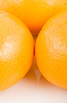 Free Orange Stock Photos - 6160453