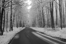 Road In The Warm Winter Royalty Free Stock Photography