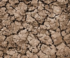 Free Drought Stock Images - 6164864